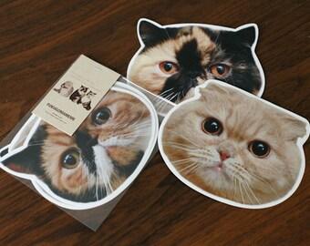 "Cat face ""FukuGomaMeme"" postcard"