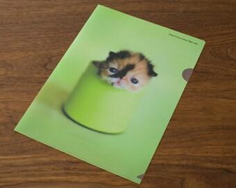 Clear folder - Meme Green
