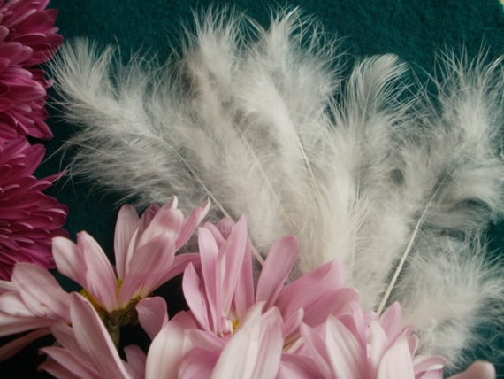 White Feather Fluffs, 40, for DIY Wedding and Spring Decorations--Humane, Eco-Friendly