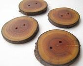"""Handmade Wooden Buttons - Buckthorn (4 qty) - 1 3/4"""" Diameter x 3/16"""" Thick"""
