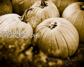Memories of Fall pumpkins - Fine Art Photograph (5x7 with 8x10 mat) also available in larger sizes