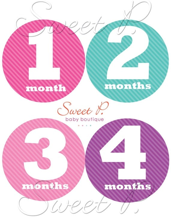Baby Girl Monthly Stickers milestone stickers bodysuit stickers
