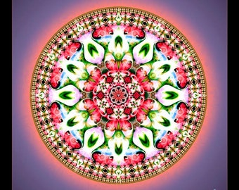 Original Mandala Padme, Lotus Flower, Spiritual Art, Visionary Art, printed on archival photopaper