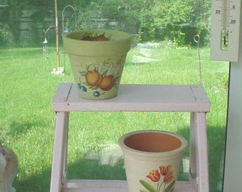 Hand painted Flower Pots Pair