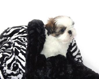 Minky Pet Blanket Zebra, Monogramming Included