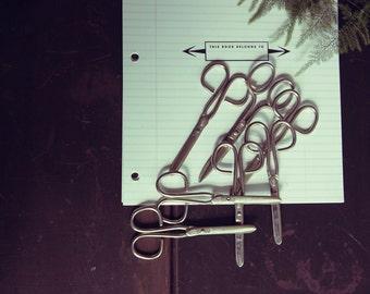 Vintage Scissors Set of 7
