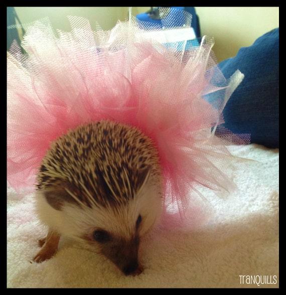 Pink Hedgehog Tutu