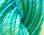 Dive into the pacific. Handspun art yarn.  Hand painted merino, 3 ply