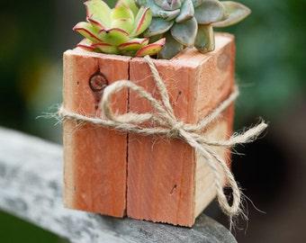 "Set of 4- 3x3"" Succulent Planter Box - Redwood - great for centerpieces."
