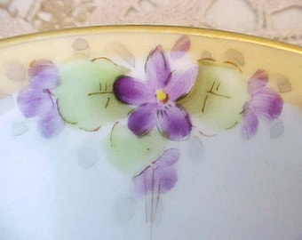 Charming Hand Painted Antique Porcelain Plate with Shy Little Violets