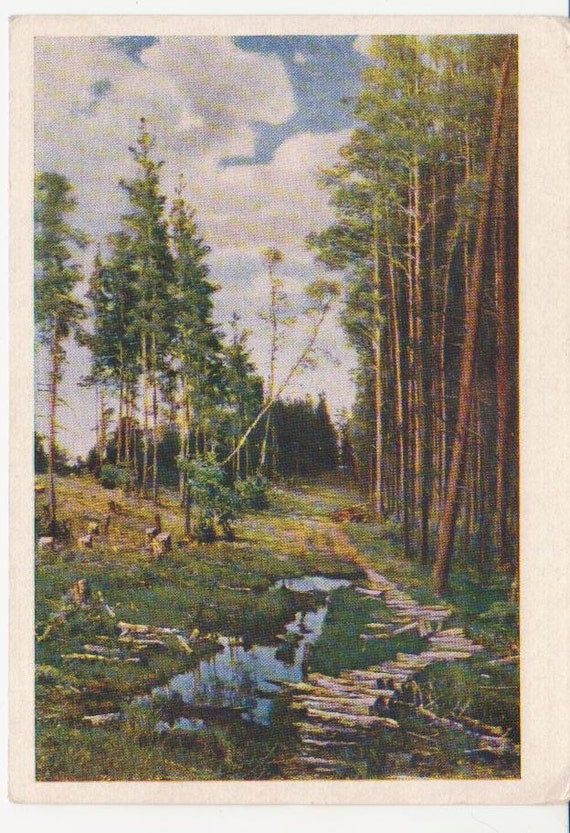 Russian painting- The Clearing in a Pine Forest. USSR vintage art postcard.