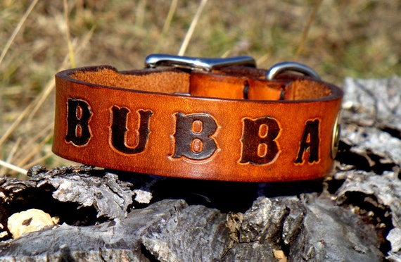 Custom Stamped Handmade Leather Dog Collar with Riveted Brass Information Tag