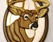 Trophy Buck Intarsia