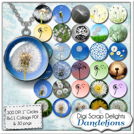 Dandelions Digital Collage Sheet One Inch Circles for Pendants, Magnets, Hair Bows,  Jewelry, Scrapbook Elements, Instant Download