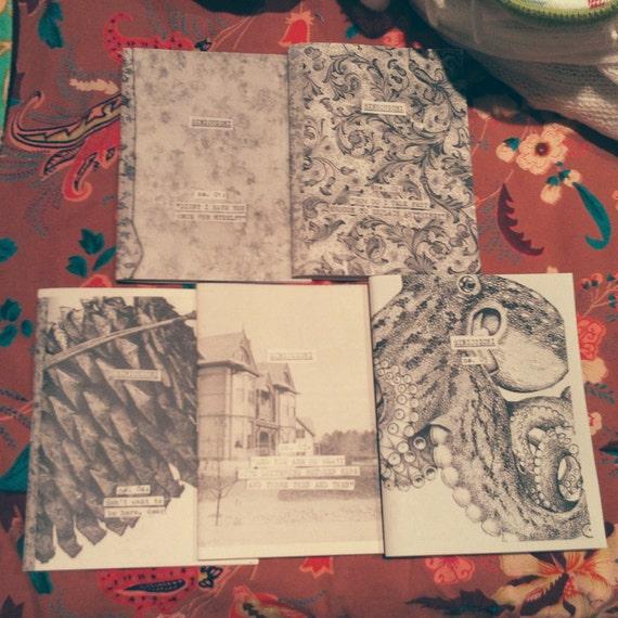 SINICUICHI diary zine 5-pack