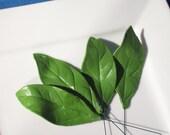 Large sugar paste leaves