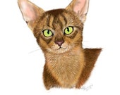 4 Abyssinian Note Card
