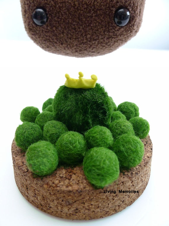 marimo kingdom 5 little prince - the living green moss ball