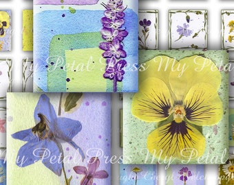 """Digital Download Pressed Flower Art Pastels 48 each 1"""" Squares for Crafters"""