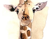 Art Print- Baby Giraffe, in watercolor