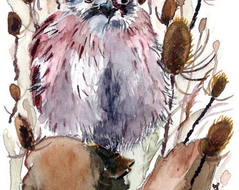 ACEO Limited Edition 3/10-Hidden Among the Thistle, in watercolor