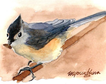 ACEO Limited Edition  1/25- Titmouse Looking at Me