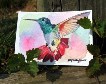 ACEO Limited Edition - Hummingbird, in watercolor
