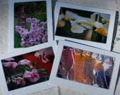 Cards Photography Spring Farm Greeting Blank Linen Flowers Gardening 5x7 Frameable