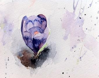 Crocus snowy watercolour print spring purple 5 x 8