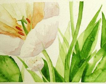White Tulip Bloom, fresh green leaves, watercolor spring art print