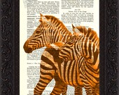 Zebra altered art Print on Vintage Repurposed  Page