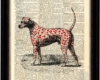 Red Dalmation Dog Print on Upcycled 1890's Latin English Dictionary Page mixed media digital