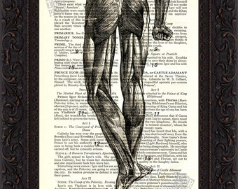Part  legs Back view of Human Muscles Print on upcycled Vintage Page mixed media digital print art