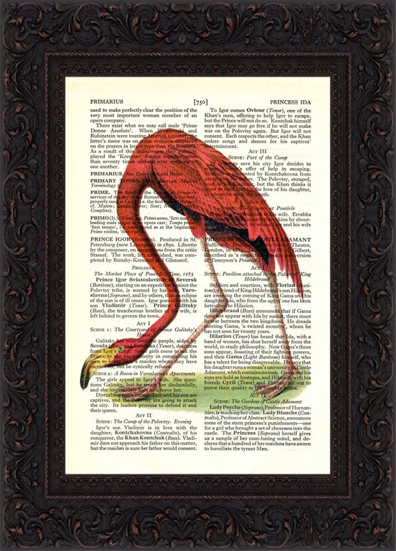 Antique Colourful Flamingo engraving Print on upcycled  Vintage Page Mixed media digital print art