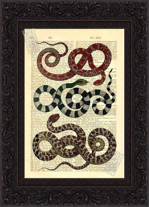 Reptile Vintage Snake engraving on upcycled French English  Dictionary Page mixed media  digital
