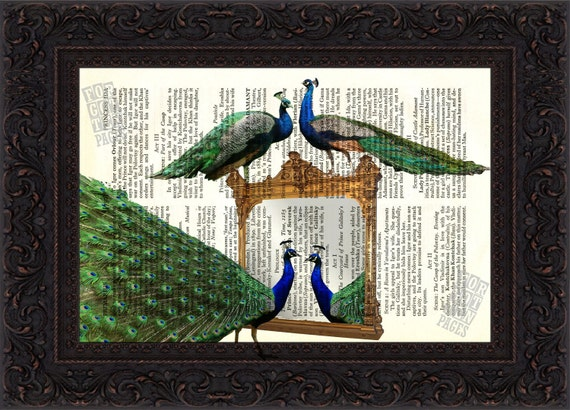 Peacocks at Mirror  Landscape print on vintage upcycled book page