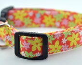 Yellow and Pink Flowers Dog Collar