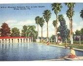 Vintage Linen Florida Postcard- Municipal Swimming Pool, on Lake Apopka, Winter Garden, Florida