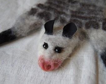 Roadkill Possum