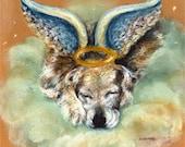 Golden Retriever sleeping dog angel
