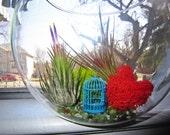 I heart spring time terrarium