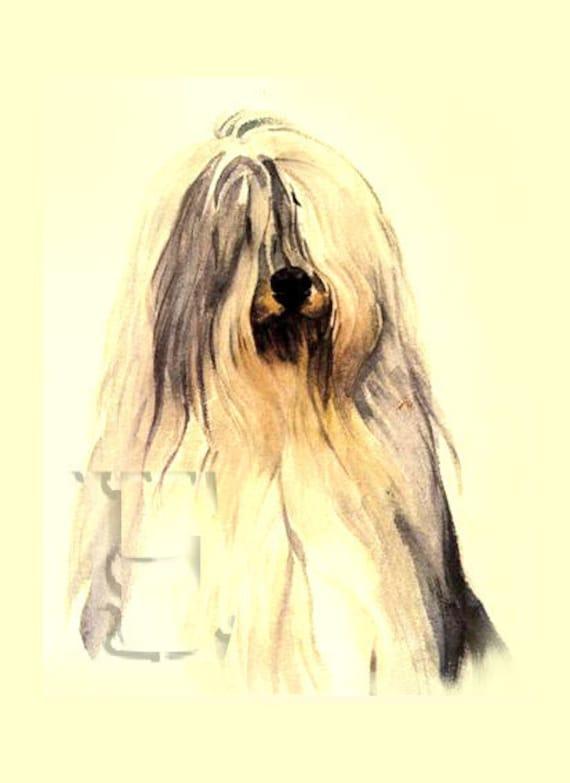 COMMISSION ORIGINAL PET portrait