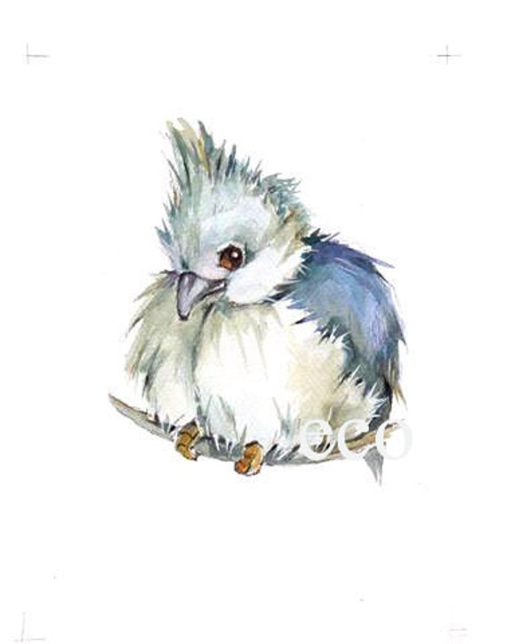 Titmouse  Print from the Original painting 5x7 inch
