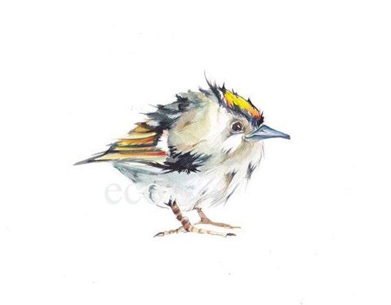 10x8 ORIGINAL FIRECREST Bird detailed painting