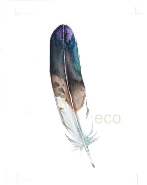 Northen American Birds Feathers Golden Eagle 5x7 inch ORiGINAL Watercolor painting