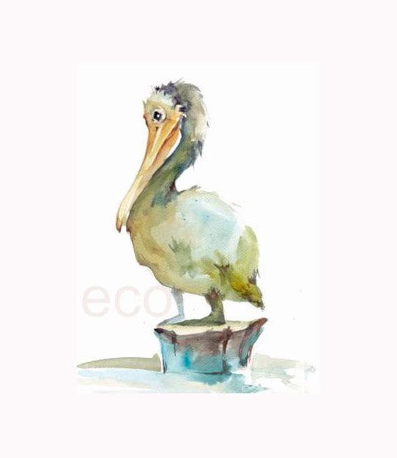 8 x10 inch Pelican Original Watercolour Painting