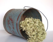 Vintage Rustic Industrial Chic Rusty Metal Fishing Bucket Pail Spring Garden Planter