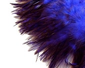 Purple Feathers / Dyed Chinchilla Rooster Saddle / 3 Inch Feather Length / 2 Inch Pre-strung Strip