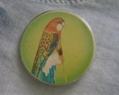 Soviet Budgie button- adorable big vintage pinback button / badge. Made in Russian USSR era 1970's