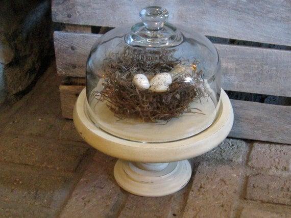 Pedestal Cloche Old White Egg Nest